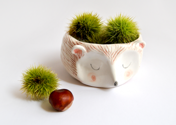 Hedgehod Bowl