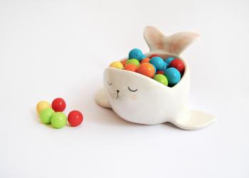 Baby Seal Bowl
