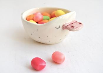Platypus Bowl