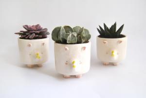 Ceramic Rhino Planter